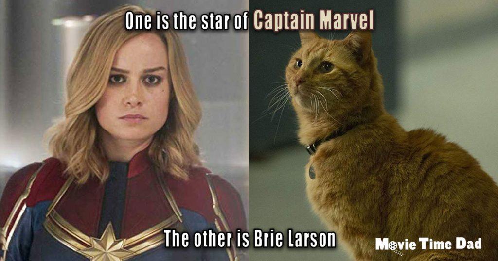 Goose vs Brie Larson Captain Marvel