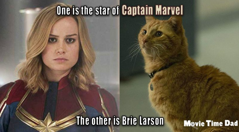 Goose vs Brie Larson Captain Marvel
