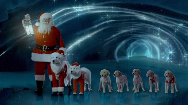 Santa Buddies - Parent Review: Santa, Santa Paws, Puppy Paws, Santa Buddies looking at great Christmas Icicle.
