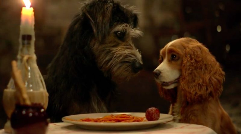Live Action Lady and the Tramp (2019): Parent Review