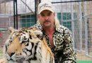 Tiger King: Honest Parent Review